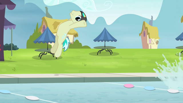 File:Swimmers flip into the pool S4E20.png