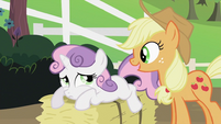 Applejack talking to Sweetie Belle S2E05