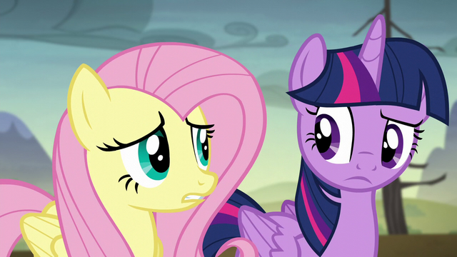 File:Twilight and Fluttershy hear the gate opening S5E23.png