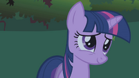 Twilight thinking about Rarity's action S1E2