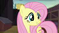 "Fluttershy ""a cake that says 'Let's be friends!'"" S5E23"