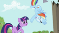 Rainbow Dash about to fall S2E03.png