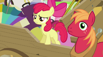 "Apple Bloom ""isn't that it on your head"" S4E09"