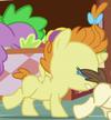 Pumpkin Cake Alicorn ID S7E3