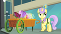 Flower levitated S4E08.png