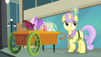 Flower levitated S4E08