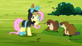 Fluttershy costume S3E5.png