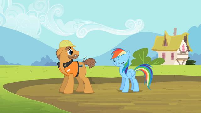 File:Rainbow Dash safe & sound S2E8.png