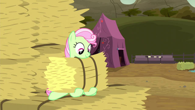 File:Florina catches the hay bale S5E6.png