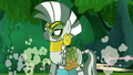 Ponies go away quick while Zecora looks S5E26.png