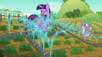 All of Applejack's vegetables are watered at once S6E10