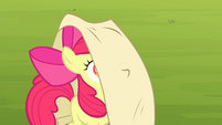 Apple Bloom given a checklist S4E17