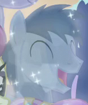 Noteworthy Crystal Pony ID S4E05.png