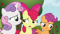 "Apple Bloom ""can a griffon even get a cutie mark?"" S6E19.png"
