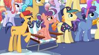 "Mustache Crystal Pony ""No Crystalling, huh?"" S6E2"
