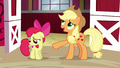 "Applejack ""why would anypony want to win"" S6E14.png"