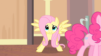 Fluttershy enters the room S4E08