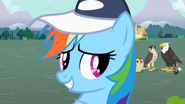File:Rainbow Dash smiling 2 S2E07.png