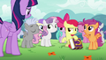 Cutie Mark Crusaders surrounded by fans S7E14.png