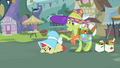 Apple Bloom embarrassed from how she is dressed S2E12.png