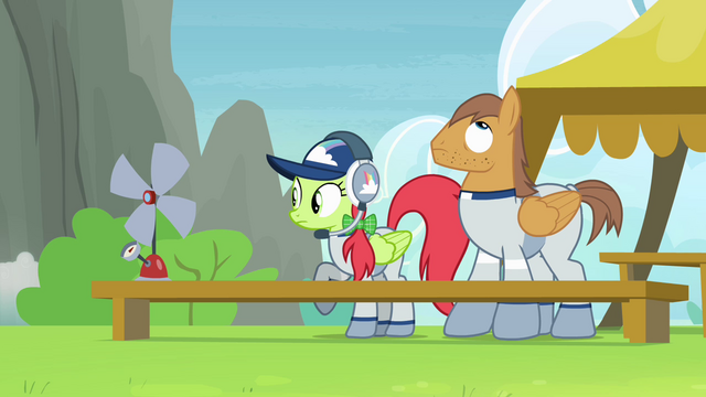 File:Cloudsdale team coaches S4E10.png