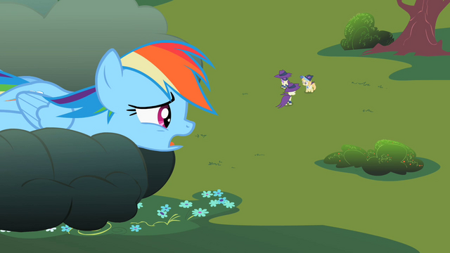 File:Rainbow Dash staring down at the foals S2E08.png
