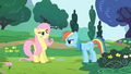Fluttershy about to cheer S1E16.png
