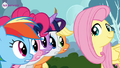 Fluttershy with her friends Twitter promotional.png