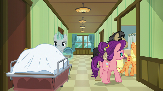 File:Applejack, Filthy, and Spoiled enter Granny's room S6E23.png