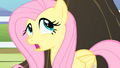 Fluttershy '...it could've been a no' S4E07.png