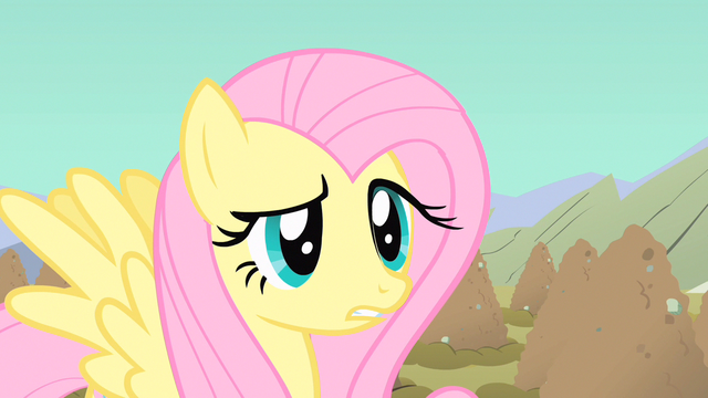 File:Fluttershy blocked all the holes S1E19.png