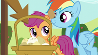 Rainbow and Scootaloo set their eggs down S5E17