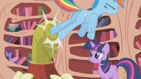 Rainbow kicks Twilight's pony bust S1E07