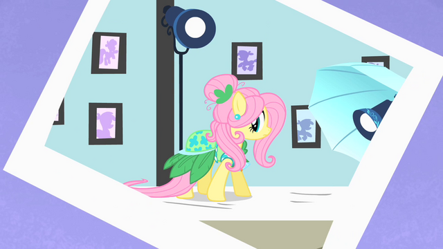 File:Fluttershy photoshoot 2 S1E20.png