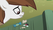 "Contents of Pipsqueak's ""Peggy"" bank S5E18.png"