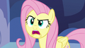 "Fluttershy ""I don't know what I'm gonna do"" S7E14.png"