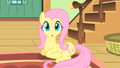 Fluttershy realizes she's late S1E22.png