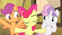 Apple Bloom silencing Sweetie Belle and Scootaloo S4E17
