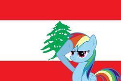 Lebanese Rainbow Dash