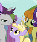 Written Script and Carrot Top with filly Dinky S2E14