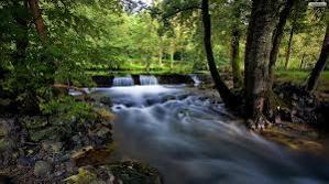 File:299px-River.jpg