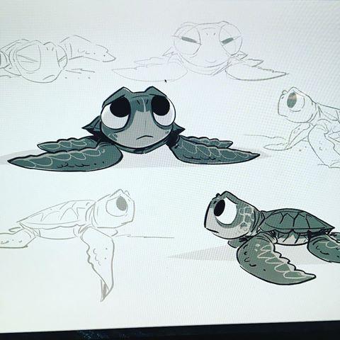 File:Baby sea turtle.jpg