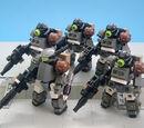 Terran Expeditionary Marines (TEM)
