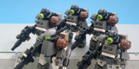 Terran Expeditionary Marines (TEM)