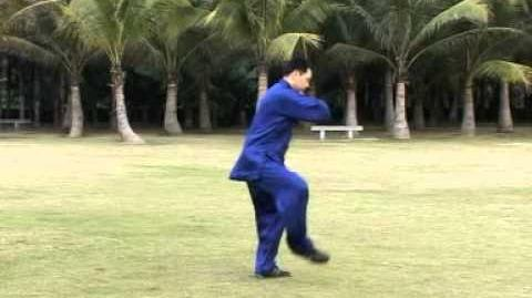 16-Form Chen-Style Taijiquan