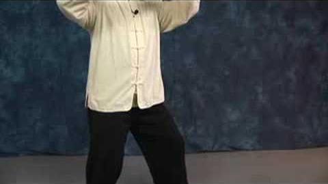 Tai Chi Movements Tai Chi Fan Through Back