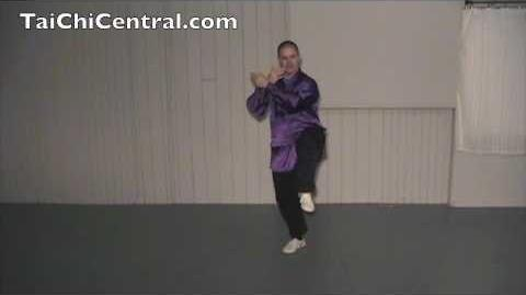 24 Form Tai Chi - Lesson 18 - Turn and Kick with Left Heel