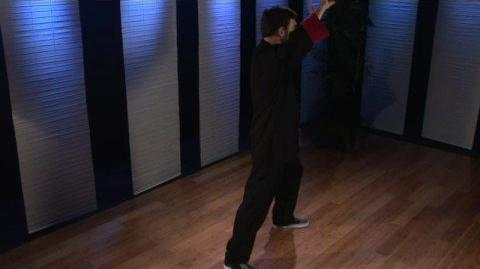 Turn Body, Deflect, Parry, and Punch (Taijiquan Movement)