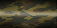 Amazon Camouflage
