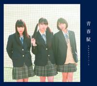 Seishunfu Cover Limited B